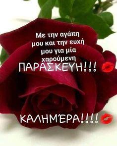 Beautiful Pink Roses, Morning Greetings Quotes, Greek Quotes, Good Morning, Quotes, Morning Wishes Quotes, Buen Dia, Bonjour, Good Morning Wishes