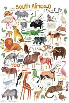 Image result for vintage african animals puzzle