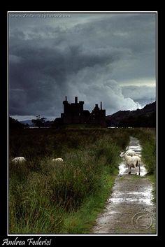Kilchurn Castle on Lock Awe, built 1450, Scotland