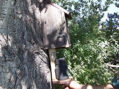 Stephens Geocache Bird House | Flickr - Photo Sharing!