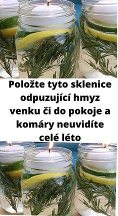 Eucalyptus Citronné, Pot Jardin, Aloe, Diy And Crafts, Sweet Home, Plants, Repel Mosquitos, Keep Mosquitoes Away, Body Odor