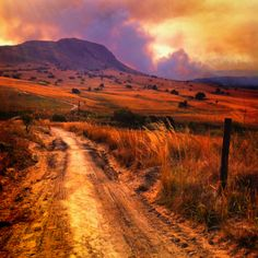 Bush fires, South Africa.