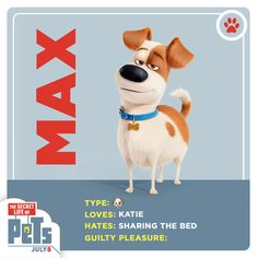 Meet Max. He's an adorable, energetic dog, Katie's best friend, and a tennis ball enthusiast. | The Secret Life of Pets | In Theaters July 8