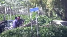 """Offerte di lavoro Palermo  Erano stati arrestati da polizia e carabinieri all'inizio di agosto. Nelle intercettazioni parlavano della """"carrozza"""" con la quale giungevano i pizzini della...  #annuncio #pagato #jobs #Italia #Sicilia Mafia ottanta anni di carcere per i """"postini"""" di Messina Denaro"""
