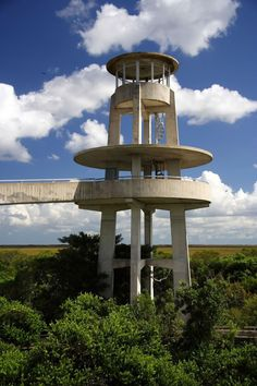 Observation Tower In Shark Valley Everglades National Park Florida USA  And bike it!!