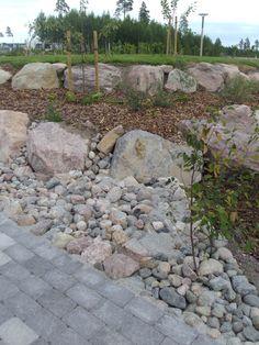 Parks, Sidewalk, Garden, Flowers, Walkway, Garten, Lawn And Garden, Royal Icing Flowers, Outdoor