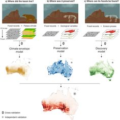 New study helps to find more fossils.  Combining palaeoclimate data with erosion studies and known fossil finds to predict where fossils can be found.