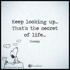 Keep looking up...