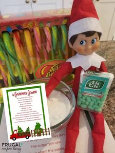 Elf on the Shelf Candy Cane Garden Poem Printable + Magic Seeds
