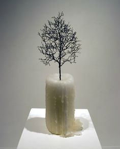 Myeongbeom Kim was born 1976 in Busan, he currently lives and works in Seoul and Chicago. With his installations he intends to describe his own. Surrealism Sculpture, Sculpture Art, Candle Sculpture, Candle Art, Animal Sculptures, Busan, Contemporary Sculpture, Contemporary Art, Seoul