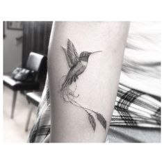 dr_woo_ssc @dr_woo_ssc Hummingbird, but ...Instagram photo | Websta (Webstagram)