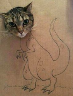 Dragon For mor funny > http://gagscenter.com