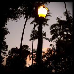 Luz da Luz