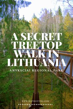 A Secret Treetop Walk in Anyksciai, Lithuania #anyksciai #lithuania