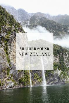 New Zealand Travel Tips | A Cruise Through Milford Sound, New Zealand