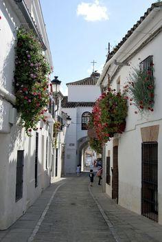 Puerta de Jerez. Zafra. Extremadura. España