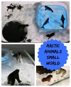 Arctic animals on the light table! A fun preschool small world activity that's perfect for winter!
