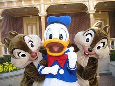 Dale, Donald, and Chip - It's a Disney World Disney Dream, Disney Love, Disney Magic, Disney Mickey, Disney Parks, Walt Disney World, Disney Pixar, Disney Worlds, Disney Stuff