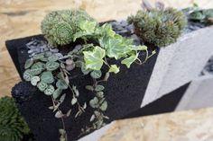 DIY Jardinière en parpaings Damier, Invitations, Invite, Upcycle, Succulents, Nature, Gardens, Concrete Interiors, Cinder Blocks