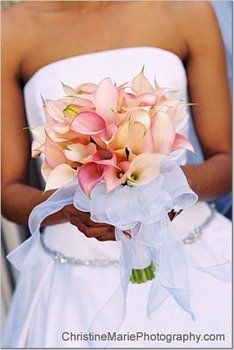 Wedding, Flowers, Pink, Bouquet - Photo by Christine Marie Photography - Project Wedding Calla Lily Bouquet, Calla Lillies, Pink Bouquet, Floral Wedding, Wedding Bouquets, Wedding Flowers, Bridesmaid Bouquet, Bridesmaids, Perfect Wedding