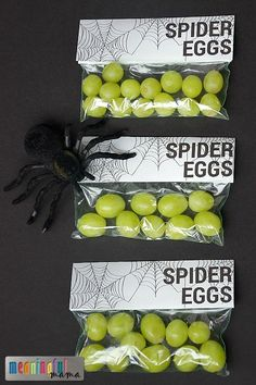 Spider Eggs Printable for Harvest Party Spider Unit or Halloween - Spider Themed. : Spider Eggs Printable for Harvest Party Spider Unit or Halloween - Spider Themed. Halloween Bebes, Halloween Class Party, Fete Halloween, Halloween Goodies, Halloween Birthday, Halloween Printable, Halloween Gifts, Spooky Halloween, Halloween Stuff
