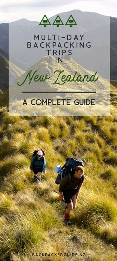 What to expect from a multi-day backpacking trip in New Zealand. You have come to New Zealand to experience the great outdoors! One of the best ways to immerse yourself in the sensational scenery is by doing a multi-day backpacking trip in New Zealand.