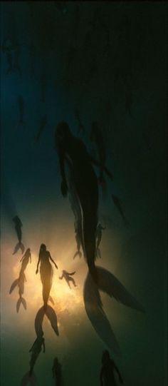 Fantasy Magic, Fantasy World, Fantasy Art, Sirens, Mythical Creatures, Sea Creatures, Foto Portrait, Images Disney, Mermaids And Mermen