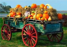 Absolutely Love this old wagon decorated for Fall Pumpkin Display, Autumn Display, Garden Wagon, Old Wagons, Flower Cart, Autumn Scenes, Fall Harvest, Autumn Fall, Bouquet