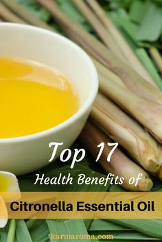 Very informative article on Citronella essential oil benefits.