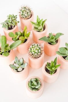 Peachy goodness. Make these DIY mini planters from scratch using pigmented plaster that you can make at home.