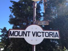 Mount Victoria - loving the train