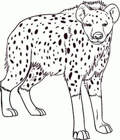 the best hyena coloring page httpcoloringalifiahbiz