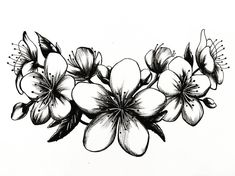 "57 Me gusta, 4 comentarios - Angel Rotten (@angel_rotten) en Instagram: ""Flores de Cerezo  #tattoo #sakura #ink #black #design #draw #drawing #illustration #instaart #art…"""