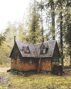 5 Celebrities Awesome Cabin In The Woods - Modern Survival Living Cottages And Bungalows, Small Cottages, Cabins And Cottages, Home Design, Log Cabin Homes, Log Cabins, Rustic Cabins, A Frame Cabin, Primitive Homes