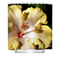 Yellow Hibiscus Shower Curtain by Kaye Menner