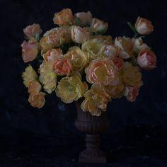 floret_tulips_charming-beauty-4