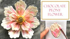 how to make a Peony styled Chocolate flower, the petals are super easy to make and can be easily be assembled onto a cake surface. Please be sure to check out the tutorial  https://youtu.be/mlemchQ-Ixo