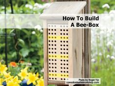 How to build a Bee box