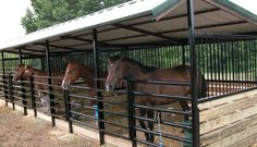 Separate covered stalls- use gates to allow conversion to a common use pen?