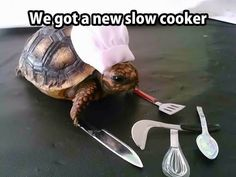 Slow cook on the house