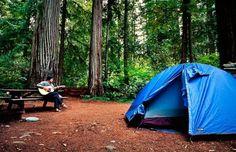 norcal camping