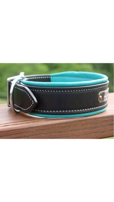 Padded Leather Dog Collar, Custom made for your dog, with the colors of your choice!