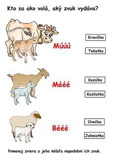 domáce zvieratá - pracovný list ABC materské školy