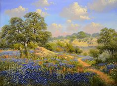 Kay Walton Cliff Side 3040 Fredericksburg Art Gallery www. Acrilic Paintings, Seascape Paintings, Landscape Paintings, Oil Paintings, Tree Outline, Country Art, Old Barns, Western Art, Art Techniques