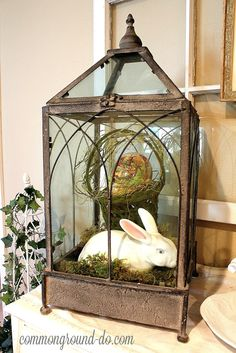 Vintage Decor Ideas Gorgeous Easter Display - Use a lantern to feature a ceramic bunny. Vintage Lanterns, Lanterns Decor, Vintage Decor, White Lanterns, Vintage Stuff, Diy Ostern, Easter Crafts, Easter Decor, Easter Ideas