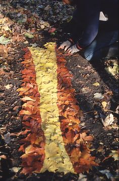 Yellow and ruddy leaves - Andy Goldsworthy