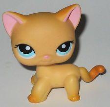 Rare Littlest Pet Shop #339 Raceabout Ranch Cat orange short hair blue eyes