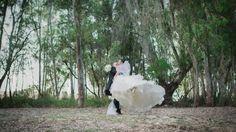 Rocio & Diego - Boda Slide, Wedding Dresses, Animals, Fashion, Templates, Photo Studio, Creative Photography, Bride Dresses, Moda