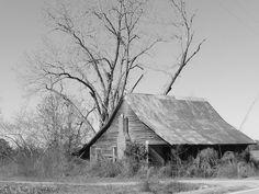 Ole' Farmhouse