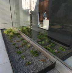 Green Building designs